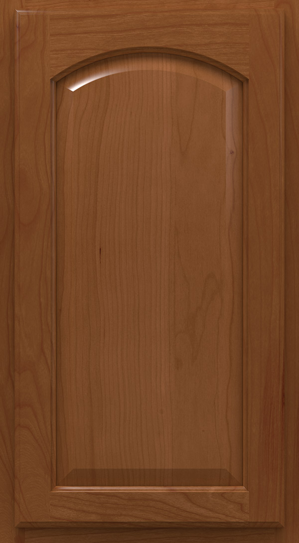heartland_arch_cherry_raised_panel_cabinet_door_terrain