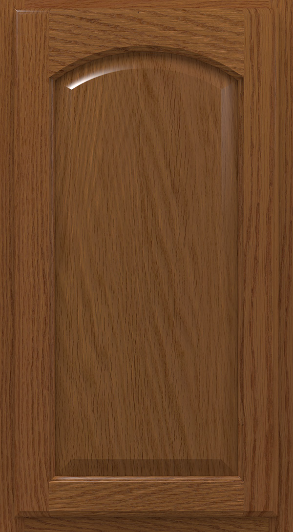 heartland_arch_oak_raised_panel_cabinet_door_terrain
