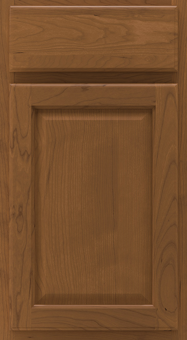 heartland_cherry_raised_panel_cabinet_door_chestnut