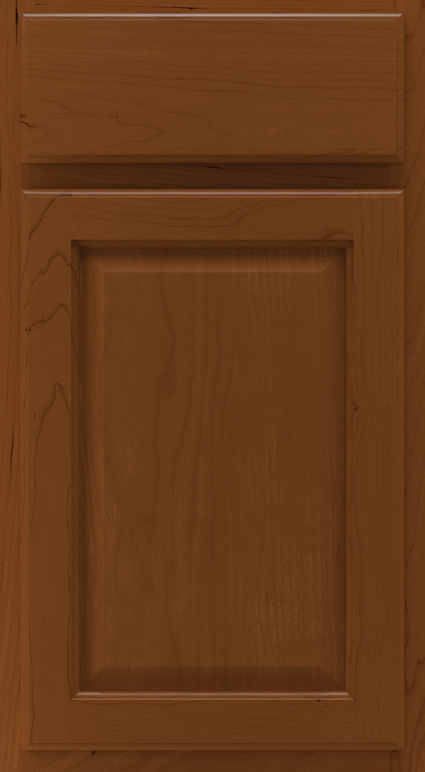 heartland_cherry_raised_panel_cabinet_door_cinnamon