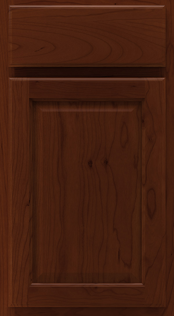heartland_cherry_raised_panel_cabinet_door_sorrel