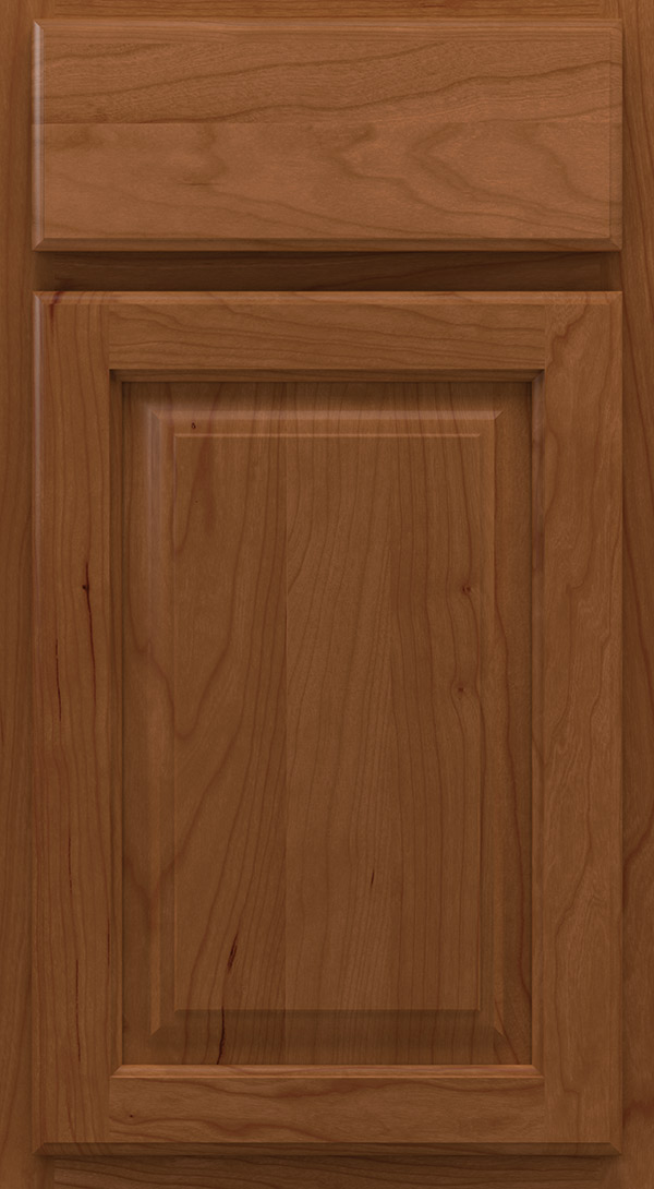 heritage_cherry_raised_panel_cabinet_door_terrain