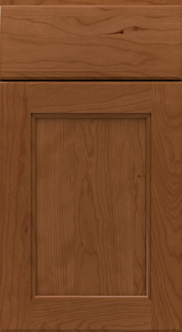 hershing_cherry_recessed_panel_cabinet_door_terrain