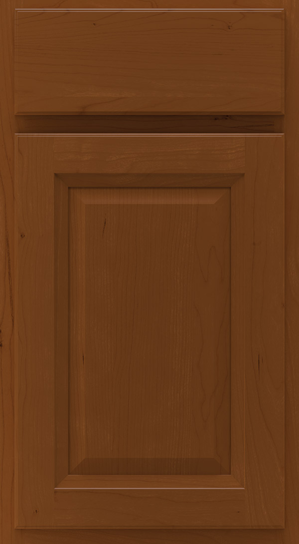 lawry_cherry_raised_panel_cabinet_door_cinnamon