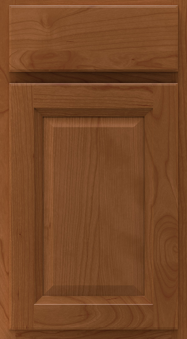 lawry_cherry_raised_panel_cabinet_door_terrain