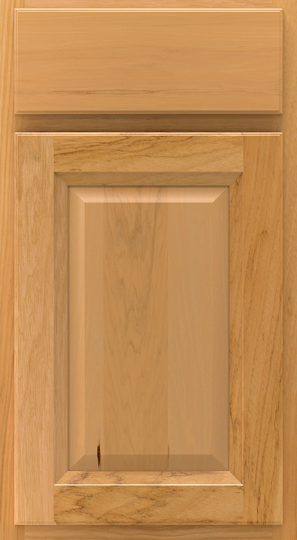 lawry_hickory_raised_panel_cabinet_door_honey