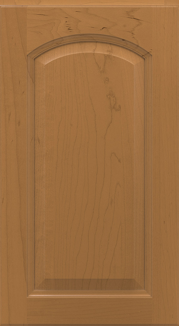 montella_arch_maple_raised_panel_cabinet_door_toffee