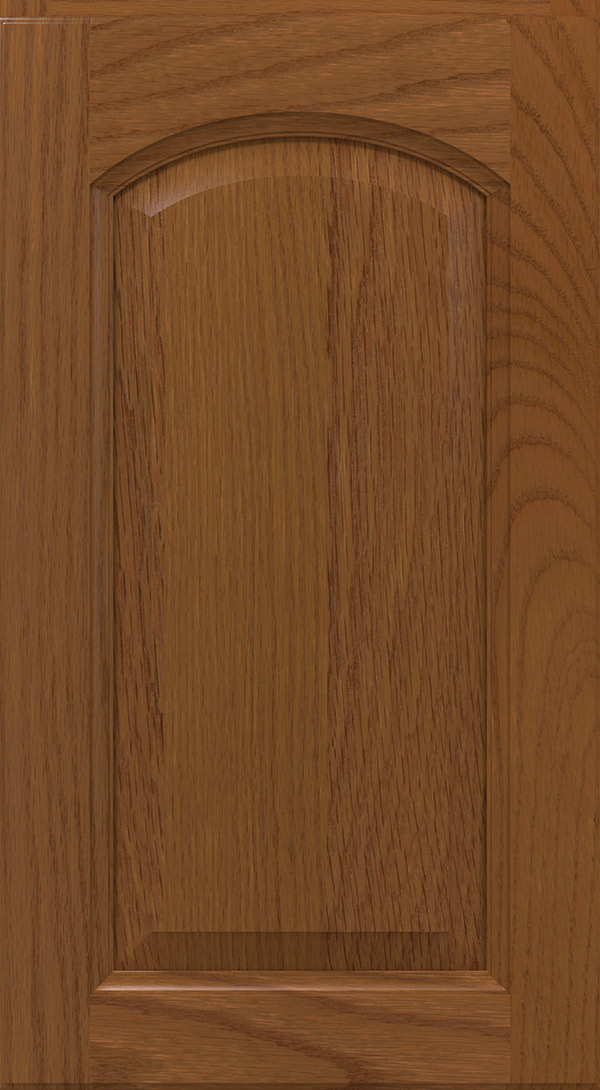 montella_arch_oak_raised_panel_cabinet_door_terrain