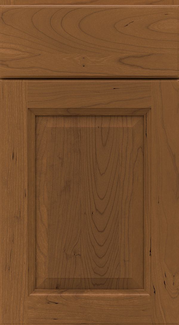 montella_cherry_raised_panel_cabinet_door_chestnut