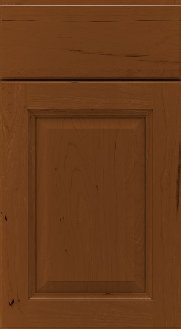 montella_cherry_raised_panel_cabinet_door_cinnamon