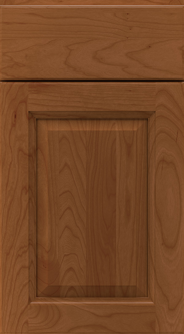 montella_cherry_raised_panel_cabinet_door_terrain