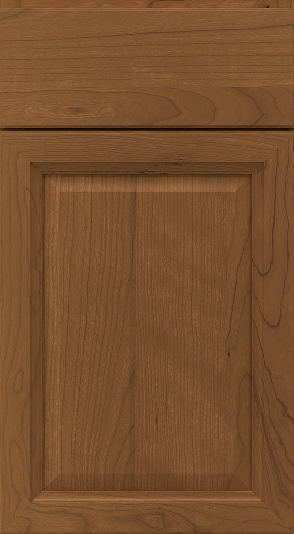 ogilby_cherry_raised_panel_cabinet_door_chestnut