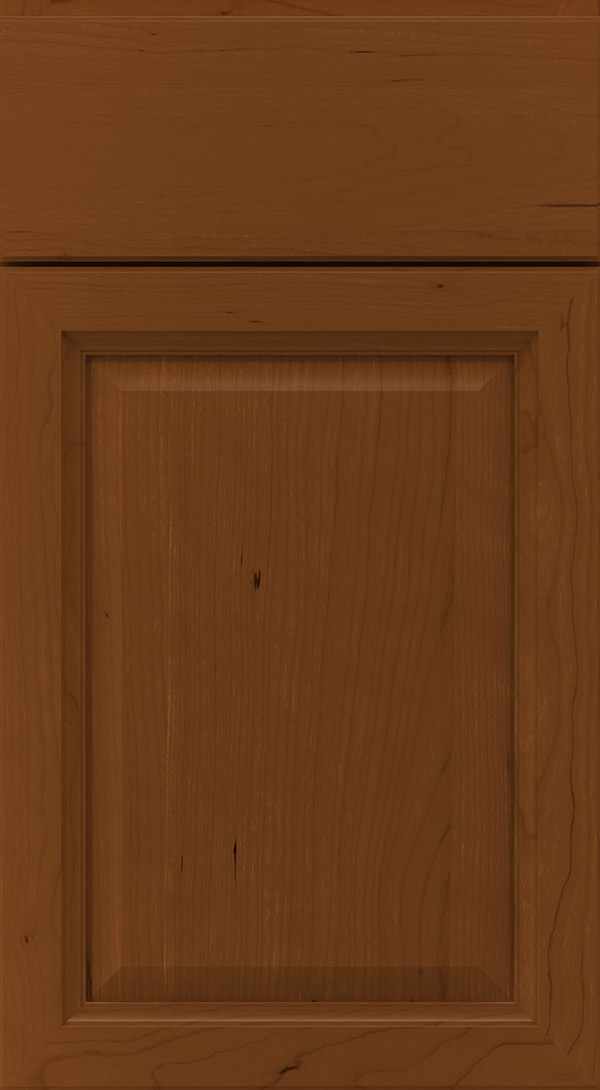 ogilby_cherry_raised_panel_cabinet_door_cinnamon