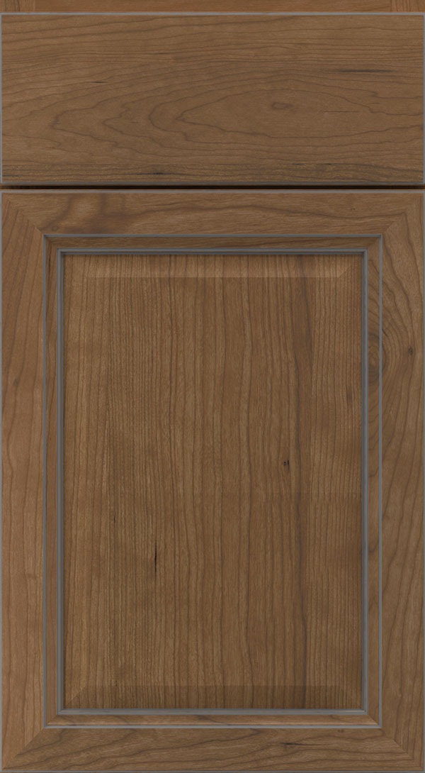 ogilby_cherry_raised_panel_cabinet_door_karoo_smoke