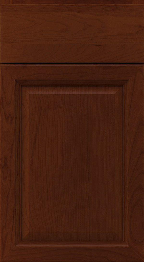 ogilby_cherry_raised_panel_cabinet_door_sorrel