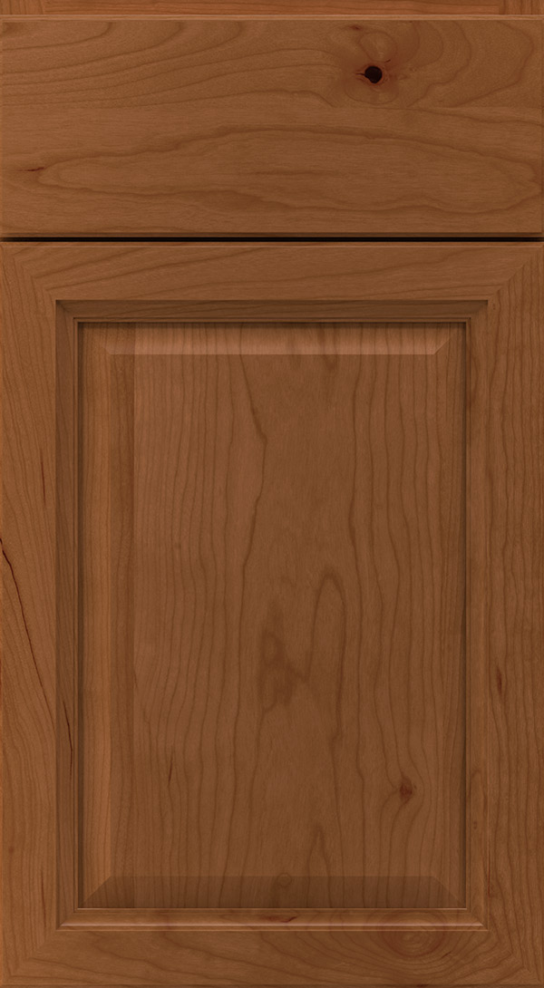 ogilby_cherry_raised_panel_cabinet_door_terrain