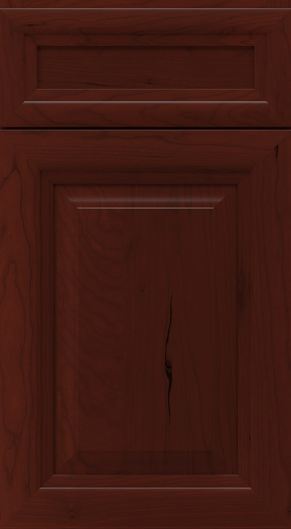 warner_5_piece_cherry_raised_panel_cabinet_door_burgundy