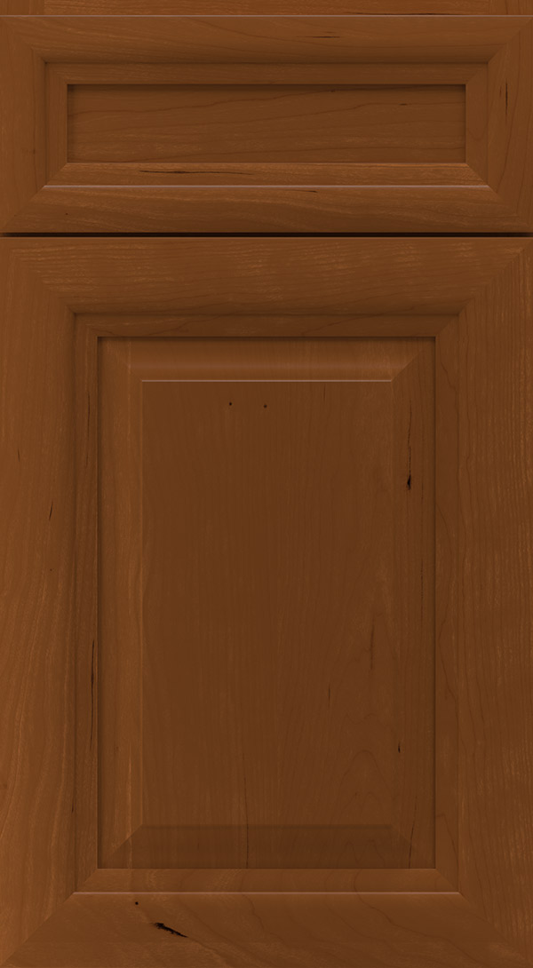 warner_5_piece_cherry_raised_panel_cabinet_door_cinnamon