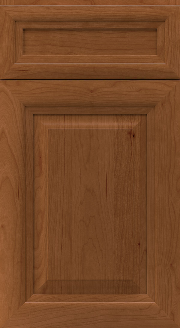 warner_5_piece_cherry_raised_panel_cabinet_door_terrain