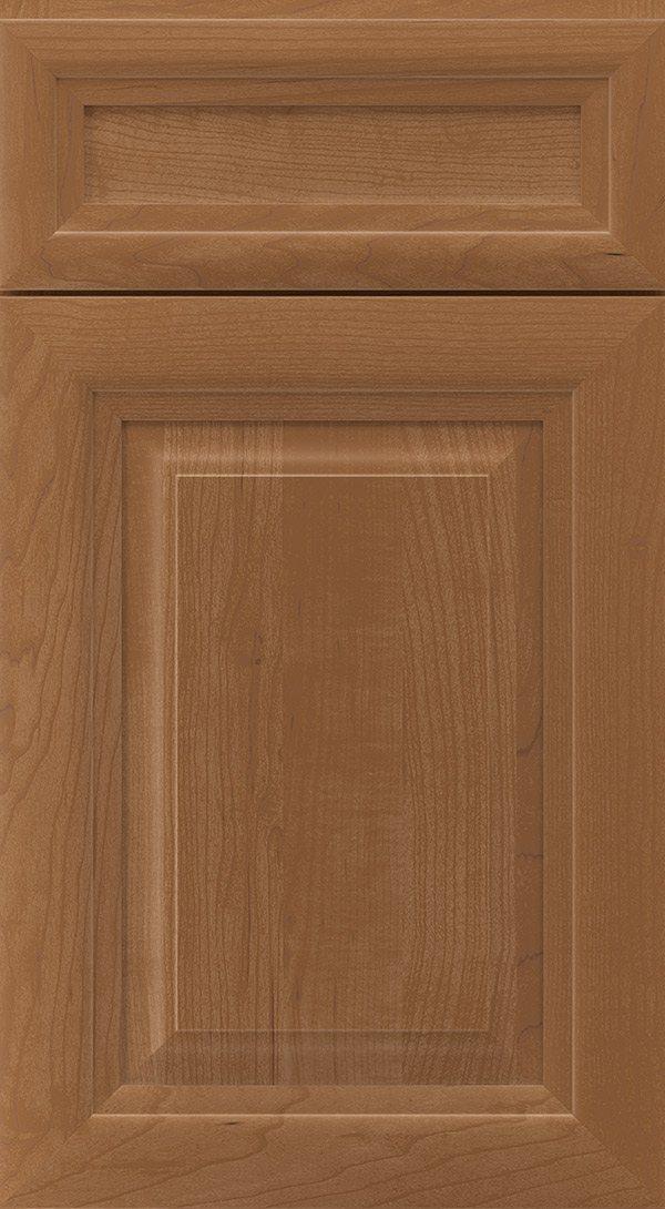 warner_5_piece_maple_raised_panel_cabinet_door_terrain